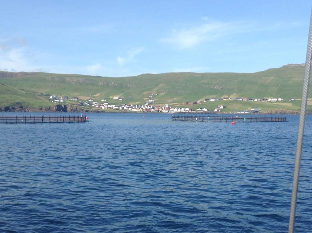 Vue de l'ile Nólsoy à partir du sommet, au centre de l'ïle. On voit au loin les îles Streymoy à gauche et Eysturoy à droite, ainsi que, plus près, le village de Nólsoy avec son port bien protégé des vagues mais pas du vent! Photo prise le 20 août 2013.